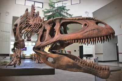 Picture copyright: Museo Paleontológico Egidio Feruglio